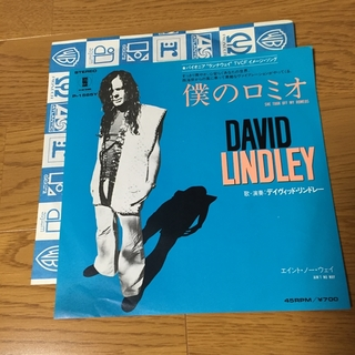 She Took Off My Romeos : David Lindley